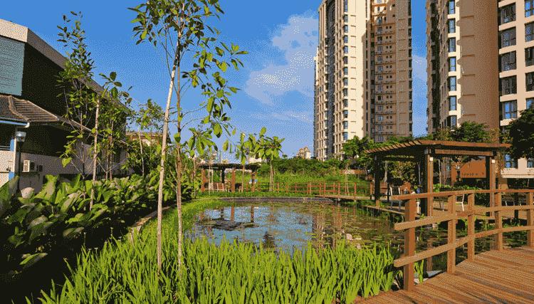 Green Alexandra Canal Linear Park