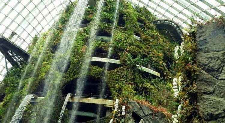 Waterfall at Cloud Forest