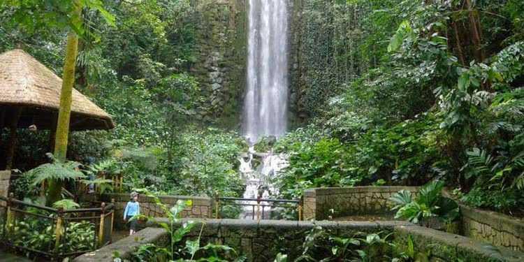 Waterfall at Jurong Bird Park