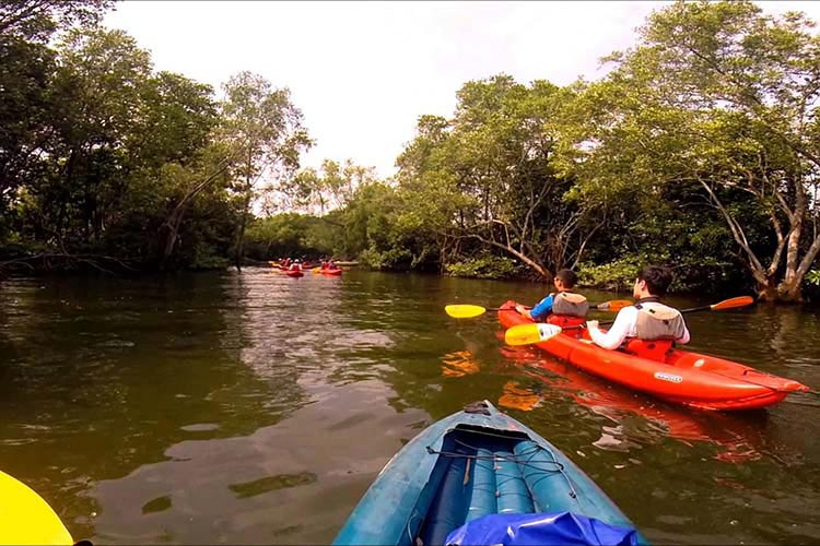 Kayaking at Khatib Bongsu Singapore Holiday Diaries: Things to do in North Singapore
