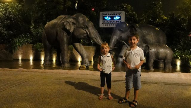 Night safari in singapore is a must sightseeing to do in december month