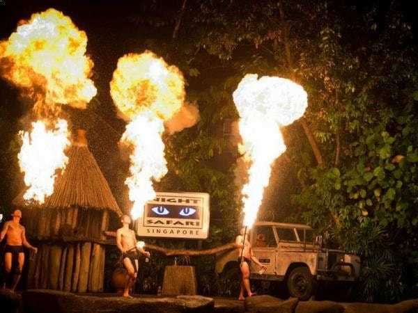 Night-safari-show-singapore
